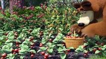 Cô Bé Siêu Quậy Và Chú Gấu Xiếc Tập 6 -  Phim Hoạt Hình 3D - Phim Hoạt Hình 3D Vui Nhộn Hài Hước - Cô Bé Siêu Quậy - Cô Bé Siêu Quậy Và Chú Gấu Xiếc Thuyết Minh - Cô Bé Siêu Quậy Và Chú Gấu Xiếc Lồng Tiếng - Cô Bé Siêu Quậy Và Chú Gấu Xiếc Vietsub
