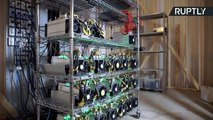 Canadian Researchers Use Heat from Bitcoin Mining to Grow Crops