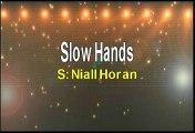 Niall Horan Slow Hands Karaoke Version