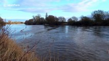 UK surfers topple off four-star Severn Bore wave