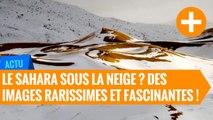 Le Sahara sous la neige ? Des images rarissimes et fascinantes !