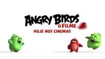 Angry Birds O Filme | Dia dos namorados | Hoje nos cinemas