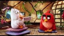Angry Birds O Filme | Gostei do papo | 12 de maio nos cinemas