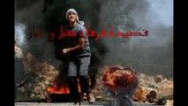 قصيدة فرقاء مقبل و جبان للدكتور الشاعر الخالدي جمال