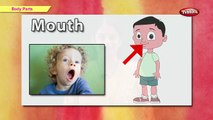 Lets Learn Body Parts   Learn Body Parts For Kids   Pre School Junior