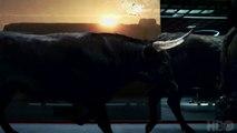 """Vu cette nuit pendant le Super-Bowl : La bande-annonce de la deuxième saison de la série """"Westworld"""" lancée le 22 avril"""