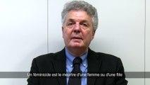 Féminicide - Bernard Cerquiglini - Le Sens des Mots