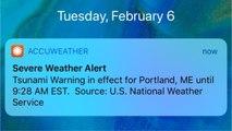 False Tsunami Alerts Issued Just One Month After Hawaii's False Missile Alert
