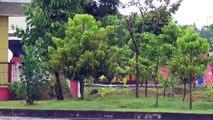 NGEBLONG DI TERMINAL | Aksi Bus Sumber Group di Terminal Ngawi