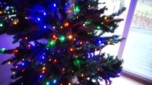 Christmas Family Vlog - Dollastic - Fun Time