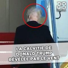 Un coup de vent révèle un détail spécial sur les cheveux de