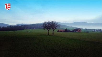 La Beuchille - Delémont - JURA (DJI Mavic Pro Platinum - 10/01/2018)