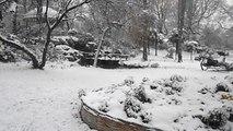Square des Batignolles : la neige !
