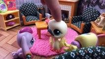 MİNİŞLER: PRENSES OLMAK İSTİYORUM - Minişler LPS MAYA - Littlest Pet Shop - Türkçe Miniş Videoları