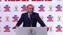 Cumhurbaşkanı Erdoğan:  Milletvekillerimiz, belediye başkanlarımız, kapı kapı dolaşacağız - İSTANBUL