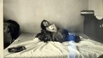 Sala Rekalde de Bilbao acoge exposición del fotógrafo Bruce Davidson