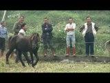 MBC 설특집 다큐멘터리 - 말과 친한 묘족의 전통, 발정난 말로 투마를? 20140130