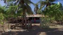 Éblouissante République dominicaine - Échappées belles