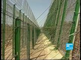 Afrique - Europe: Immigration clandestine