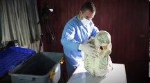 A la recherche des Dieux Perdus - Les Momies de Nazca - Sont-ils Humains ?  Ep7  - Oct 2017