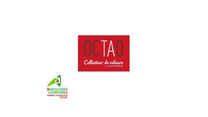OCTAO un collecteur au service de l'emploi des jeunes