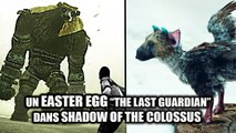 Où trouver l'EASTER EGG CACHÉ de Shadow of The Colossus !