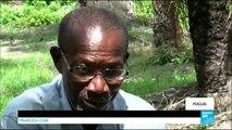 SENEGAL : Le conflit en Casamance menace toujours les habitants - #FOCUS