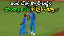 India vs South Africa: Virat Kohli loves Pandya's Flying One handed Catch
