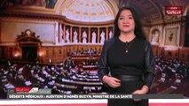 Déserts médicaux : audition d'Agnès Buzyn, ministre de la Santé - Les matins du Sénat (15/02/2018)