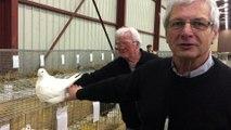 Norbert Besson et Jacques Reberat présentent l'exposition avicole