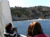 Les calanques en bateau (18)