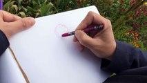 Comment j'ai dessiné Monet, la leçon de dessin de dessin d'Efa