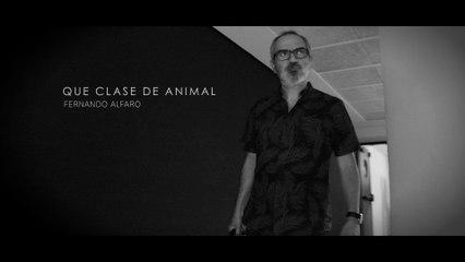 Fernando Alfaro - ¿Qué Clase De Animal?