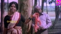 Senthil S. S. Chandran Very Very Rare Comedy |Tamil Comedy Scenes|Senthil Kovai Sarala Funny Comedy