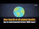 One-fourth of all global deaths due to environmental factors: WHO report