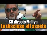 SC directs Vijay Mallya to disclose all assets as banks reject repayment offer