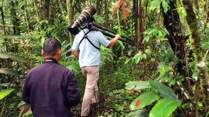 Wonderful Indonesia - Natural Wonders of Sulawesi