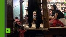 Travail de singe ? Non… des singes font le service dans un restaurant japonais !