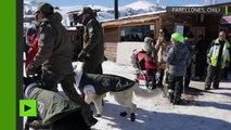 Lunettes de soleil et vestes d'hiver : des chiens chiliens équipés pour la patrouille en montagne