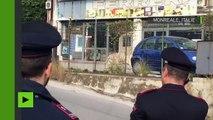 Italie : un tigre du Bengale sème la panique dans les rues de Monreale