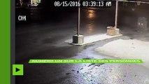 Cambriolage à la canadienne : deux voleurs de bière filmés lors de leur méfait