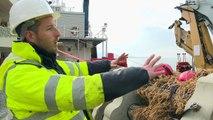 Marseille: des récifs artificiels au débouché d'un ancien égout