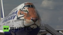 Le vol du tigre : Une compagnie aérienne s'engage pour la sauvegarde du grand félin