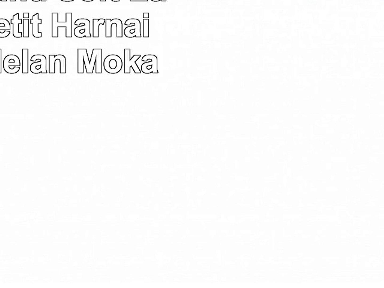 HUNTER Round /& Soft Luxus Elk Petit Harnais en Cuir d/élan Moka