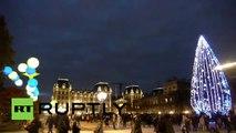 L'arbre de Noël offert par la Russie éclaire le parvis de Notre-Dame