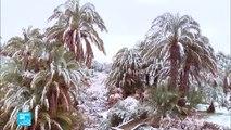المغرب: تساقط للثلوج في الصحراء في ظاهرة مناخية غير مألوفة