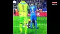 Bafetimbi Gomis victime d'un malaise en plein match, il s'écroule sur la pelouse (vidéo)
