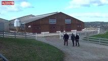Congrès FNO Rodez : agneaux Lacaune label rouge et sélection génétique