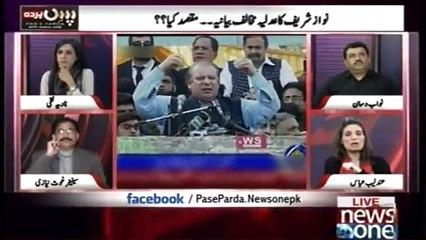 Nawaz Sharif should sue if Hamid Mir is lying- Andleeb Abbas