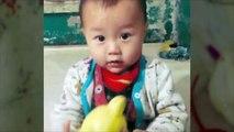 ACCIDENT CHOQUANT DE BAGUETTES DANS LE NEZ: Un bébé s'enfonce une baguette de 6,3 cm dans le cerveau